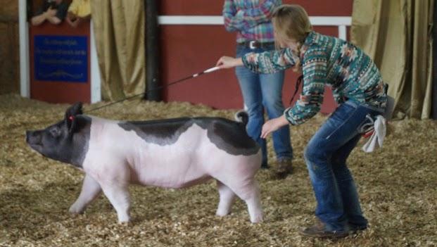 Beaufort County Farm Bureau